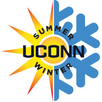 summer_winter_icon